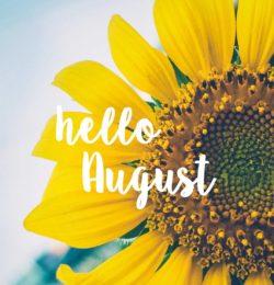 Newsletter August 2020